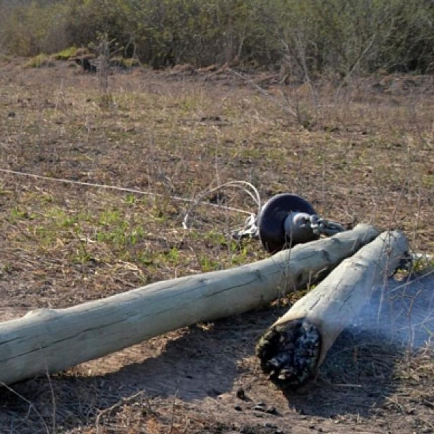 Incendios forestales dejan sin luz a casi todo el norte de Los Frentones