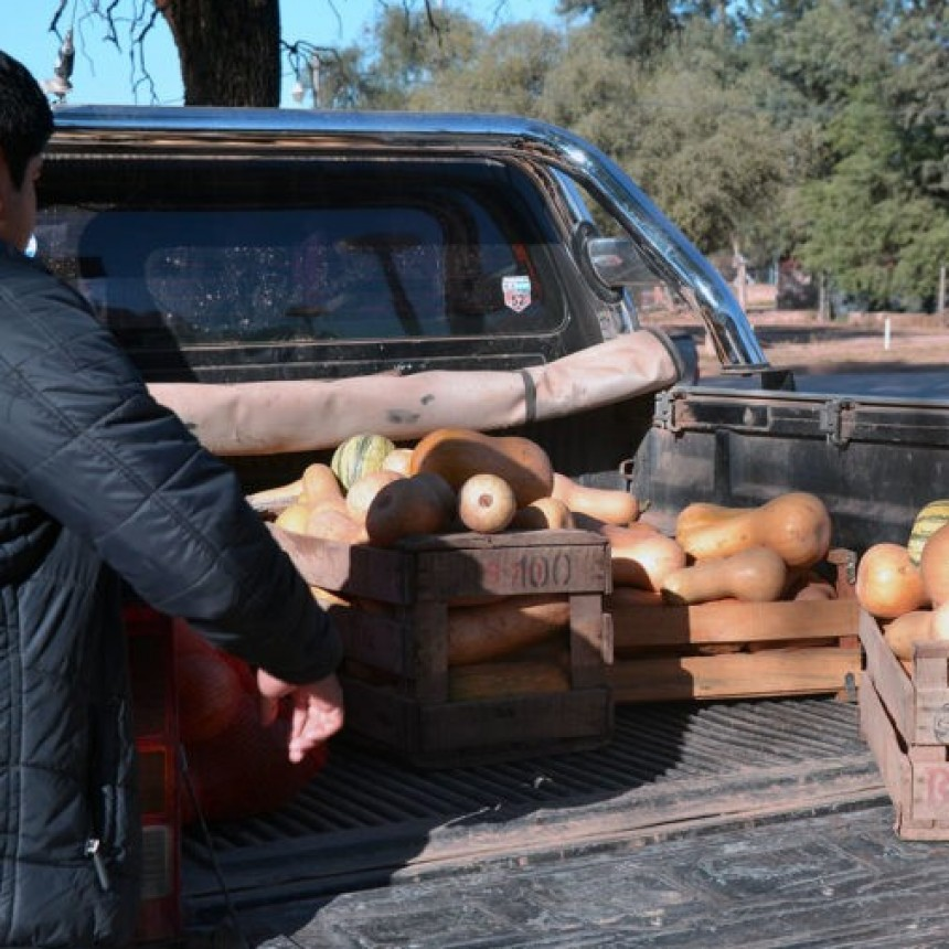 Funcionando la Huerta Municipal de Fuerte Esperanza