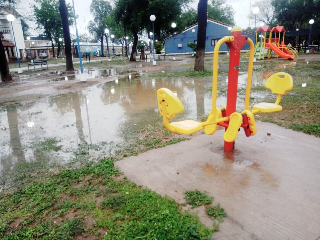 Lluvia en Fuerte Esperanza, Alivio para el Sector Ganadero.